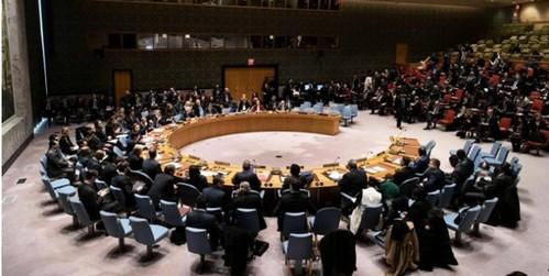 یکی از دیپلماتها به خبرگزاری فرانسه گفت: «این قطعنامه یک موضع ماکسیمالیستی [افراطی و حداکثری] را در قبال ایران اتخاذ کرده است».